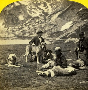 Switzerland Grand St Bernard Hospice Dogs Alpine Club William England Photo 1863