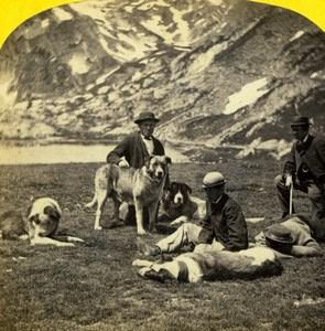 Switzerland Grand St Bernard Hospice Dogs Alpine Club William England Photo 1863