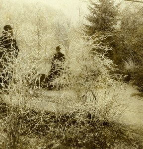 Germany Baden Baden Forest Countryside Old Gustav Salzer Stereoview Photo 1899
