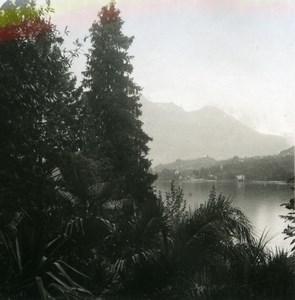 Italy Lake Como San Giovanni from Villa Carlotta Old Stereoview Photo 1900
