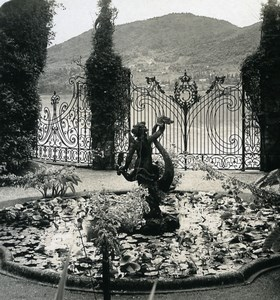 Italy Lake Como Cadenabbia Villa Carlotta Garden Photo Stereoview Wehrli 1900
