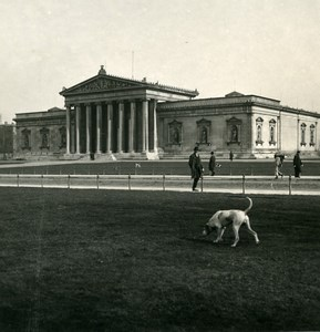 Germany Munich Glyptothek München Dog Old Photo Stereoview NPG 1900