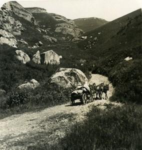 Caucase Transcaucasie Russie Route de Narzan Nazran ??????? Ancienne Photo Stereo NPG 1906