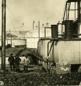 Caucase Tchétchénie Grozny préparation du pétrole Russie ??????? Ancienne Photo Stereo NPG 1906