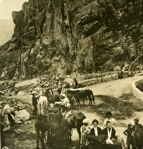 Caucasus Mountain Georgian Military Road St Gulety Old Photo Stereoview NPG 1906