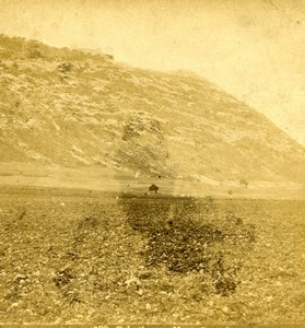 Israel Mount Carmel Panorama Old Photo Stereoview 1875
