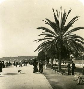 France Nice Promenade des Anglais Ancienne Photo Stereo NPG 1905