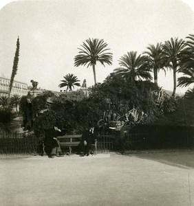 France Nice Hommes sur un Banc Terrasse des Nouveaux Jardins Ancienne Photo Stereo NPG 1905